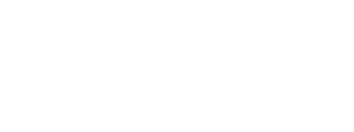 official selection: BAMcinemaFest, 2013